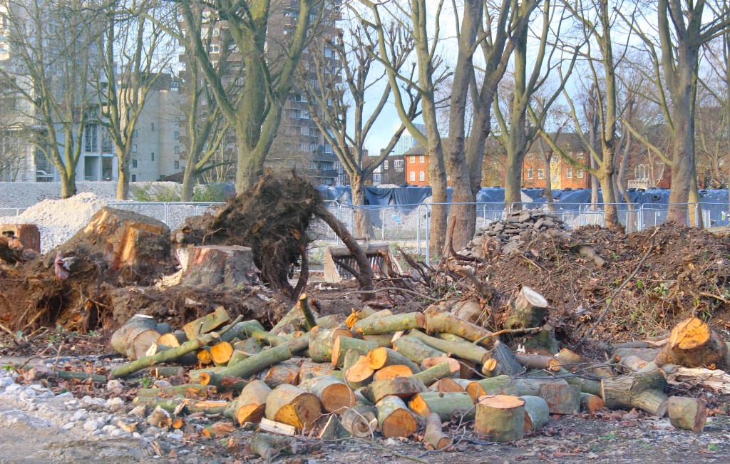 'Removed' mature Heygate trees will be 'replaced' say council and developer  © London Intelligence 2014